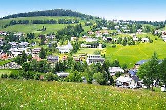 Ferienwohnung in der Residenz Schauinsland,...