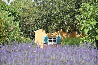 Herrliches Cottage in Loulé, Algarve mit priv...