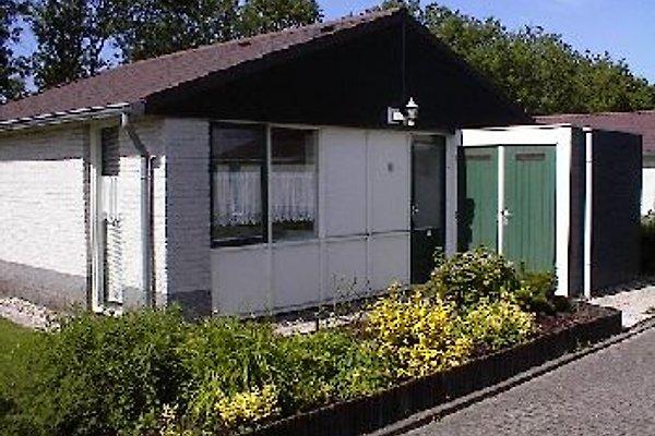 Bungalowpark 1 - Zijpersluis in Burgerbrug - Bild 1