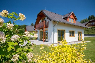 Holiday home relaxing holiday Lipno nad Vltavou