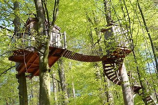 Treehouse Solling GbR