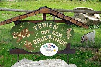 Ferienwohnung Dreisamtal - Maierhof