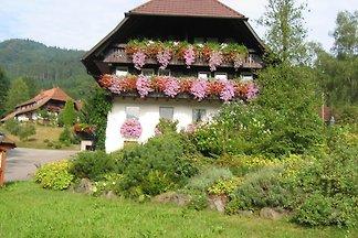 Haus Schneider, Ferienwohnung
