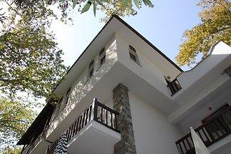 PLATANOFYLLA Pelion Apartment No11