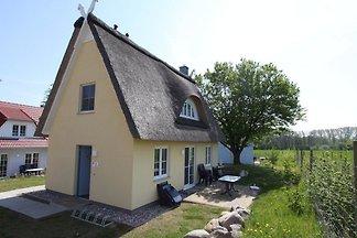 CLASSIC Ferienhaus Seepferdchen A6