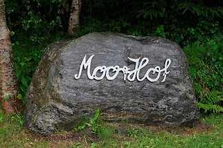 Moorhof Harders FeWo 4