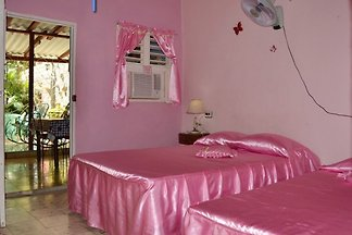 Hostal Mariposa Appartement 1