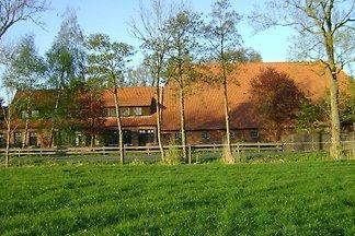 Ferienhaus Sinsum