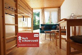 Haus Tanneck - FeWo 2- Feldberg im