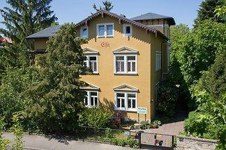 Apartment der Villa Elsa