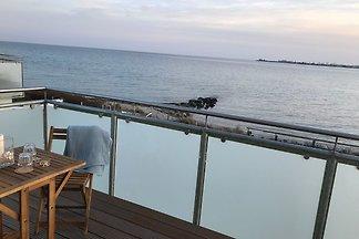 Strandhaus Appartement Seeschwalbe
