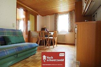 Haus Tanneck - FeWo 4 - Feldberg im