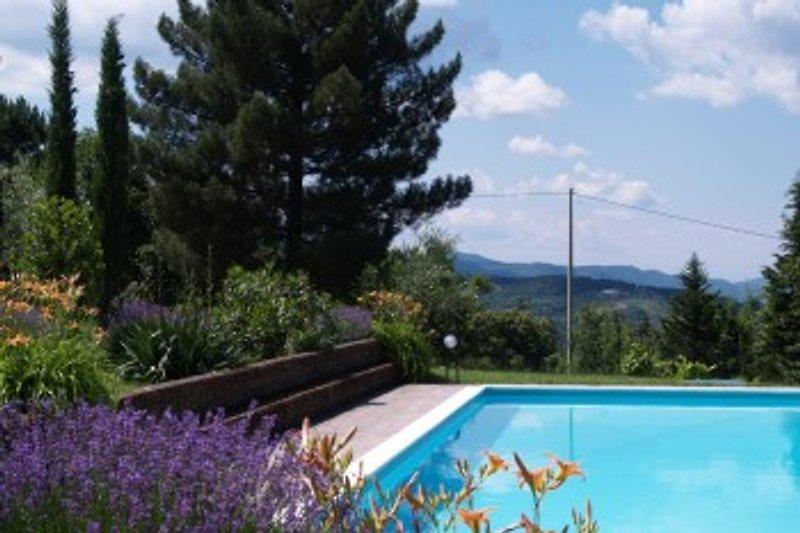 der Pool mit Blick ins Chiantigebiet