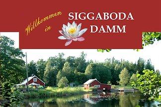 Siggaboda Damm