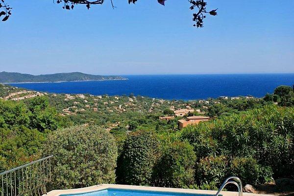 Villa Sylvia  à Cavalaire-sur-Mer - Image 1