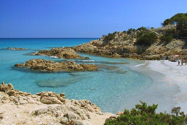 Zwei wunderbare Strandbuchten liegen gleich in der Nähe, nur 3 Minuten mit dem Auto oder notfalls sogar ca. 15 Minuten zu Fuß