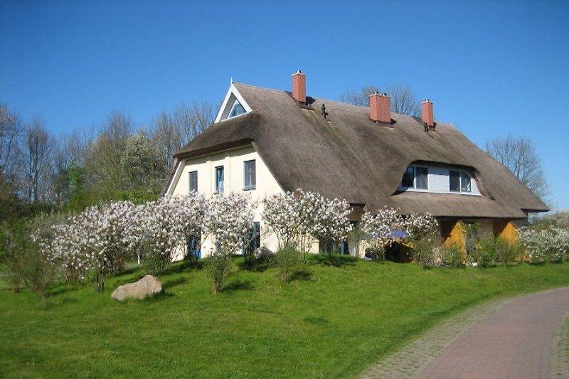 Haus Malve