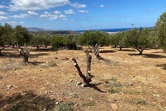 Eden-Sisi-Crete - inkl. Mietwagen