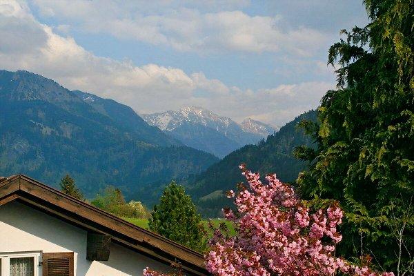 Apartment Clemens en Bad Hindelang - imágen 1