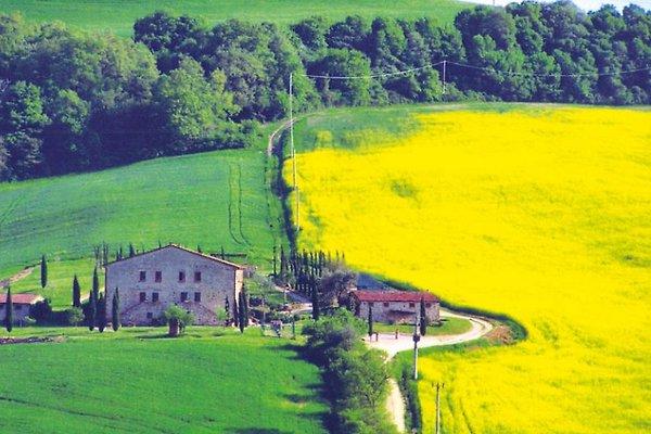 Alquiler Torrita - Toscana en Torrita di Siena - imágen 1