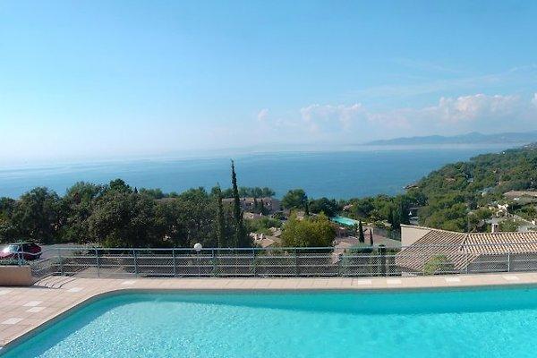 Appartement mit frei Blick auf Mer  in Saint Raphaël - Bild 1