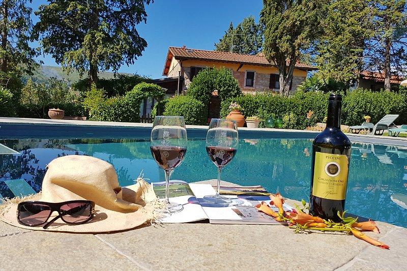 Pool + Sunshine+ Chianti Wine... What Else!!!
