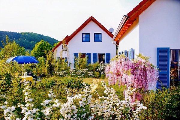 Ferienhäuser im Frühling