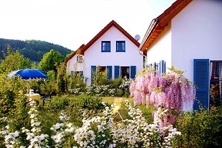 Holiday home relaxing holiday Losheim am See