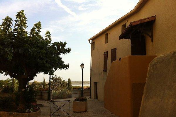 Maison du portail vieil en Vendres -  1