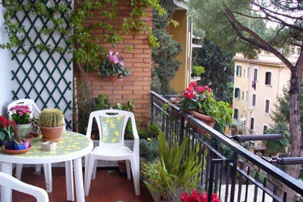 Der wunderbare Balkon