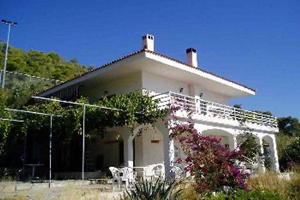 Villa Constantinos en Loutraki - imágen 1