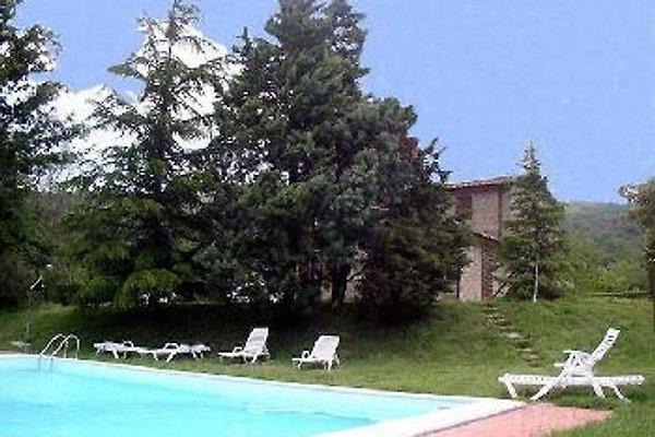 Casa La Cascina - 5 FeWos in Lisciano Niccone - Bild 1