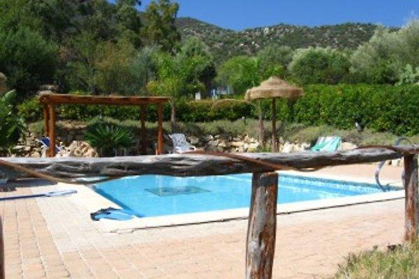 Sardaigne: villa Viola  à Solanas - Image 1