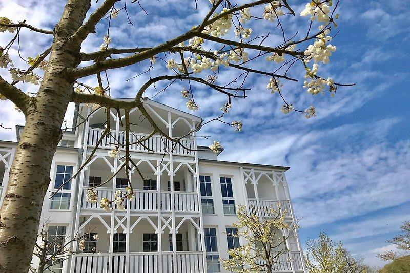 Strahlend weiße Häuser