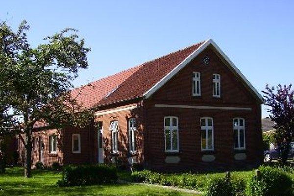 Ferienhaus Schoonorth in Schoonorth - Bild 1