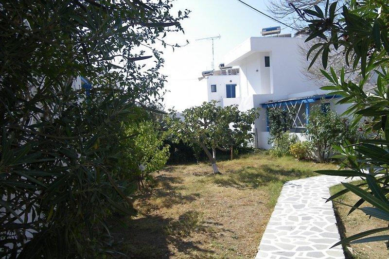 Pension ERMINA à Paphos - Image 2