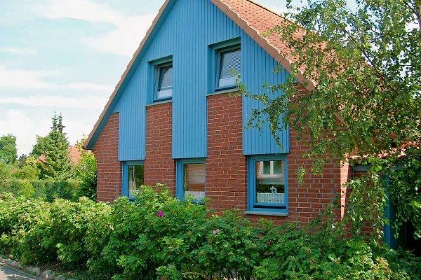 Ferienhaus Teich en Hohwacht - imágen 1