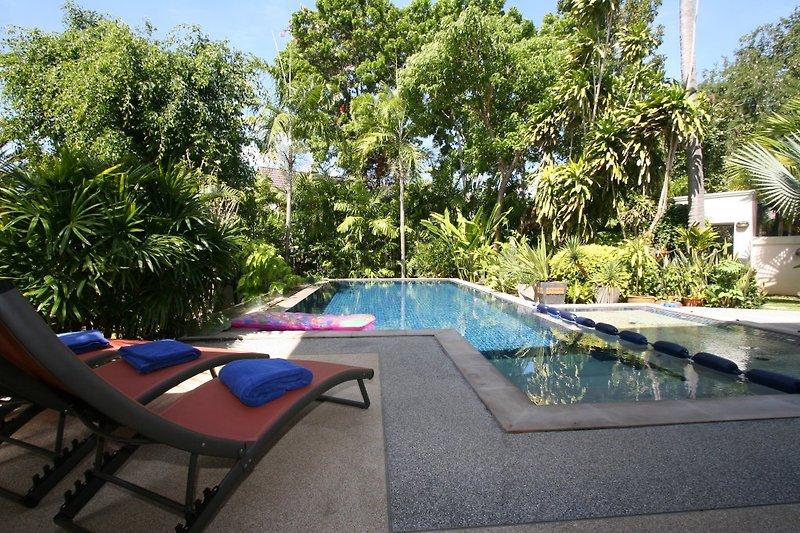 Blick von der Terrasse aus auf den Pool