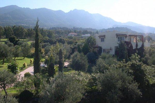 Villa  in Lagoudi - Bild 1