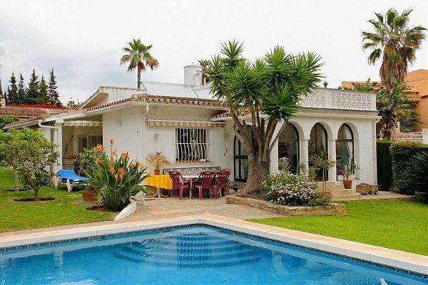mi Capricho en Marbella - imágen 1