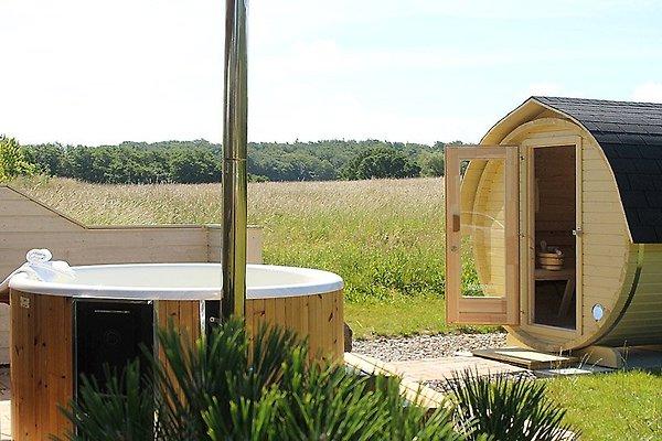 ferienhaus norway ferienhaus in wittenbeck mieten. Black Bedroom Furniture Sets. Home Design Ideas