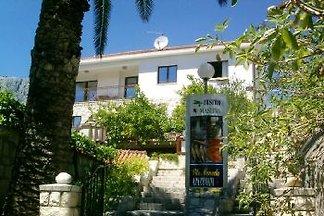 Ferienhaus mit Ferienwohnungen in Kroatien direkt am Meer