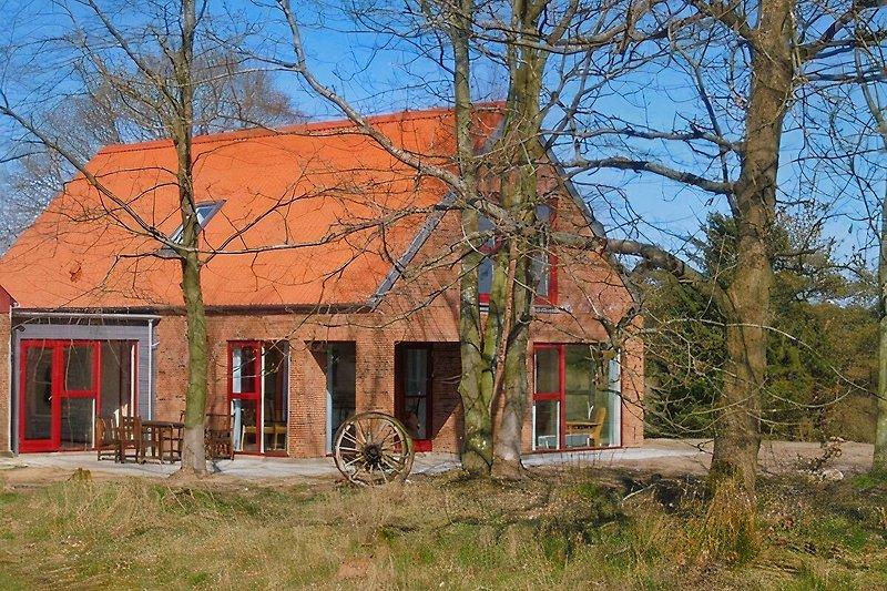 Riskjär Wald à Viborg - Image 2