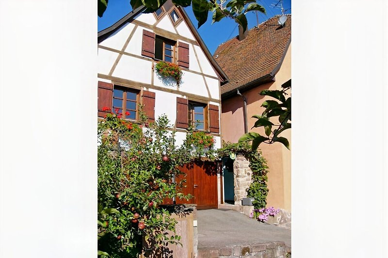 Fewo in Gueberschwihr bei Colmar, Eguisheim, Kaysersberg, Riquewihr