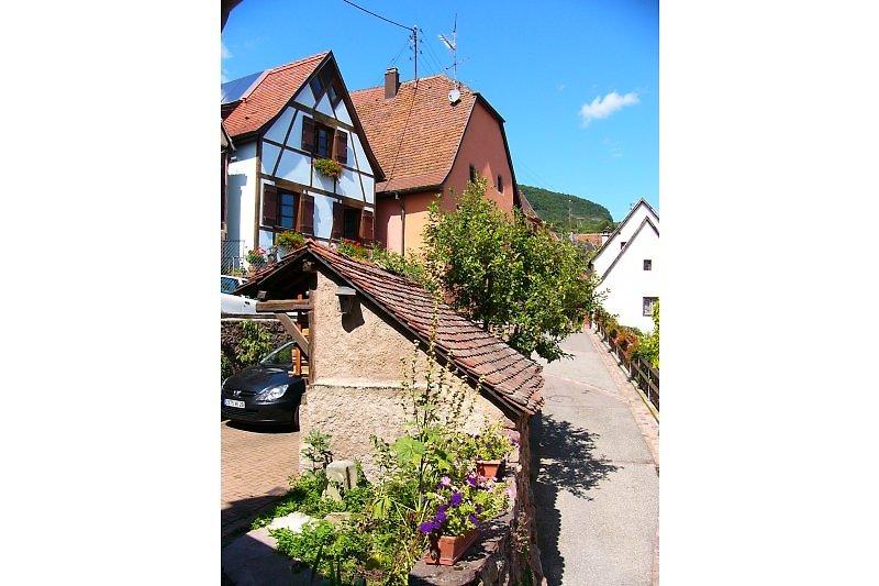 Fewo auf der elsaessische Weinstrasse bei  Colmar, Eguisheim, Kaysersberg, Riquewihr