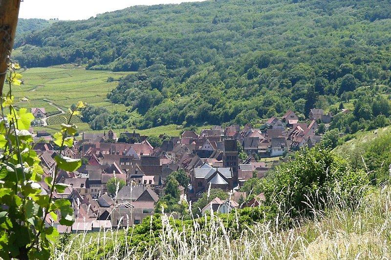 Gueberschwihr auf der Weinstrasse bei Colmar, Eguisheim, Kaysersberg, Riquewihr