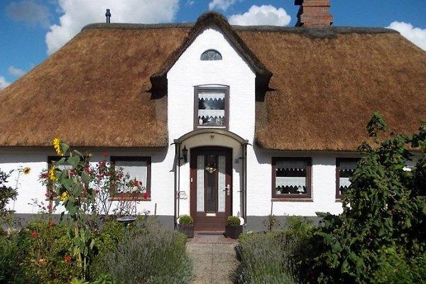 Nissen House ****  à Süderlügum - Image 1