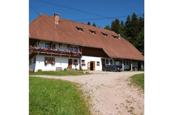 Unterfalkenhof en Tennenbronn - imágen 1