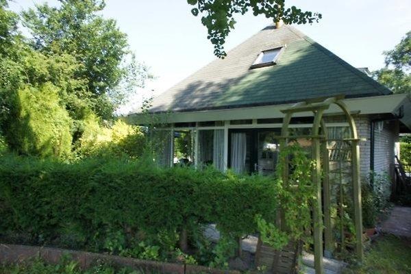 Casa vacanze in Ouddorp - immagine 1