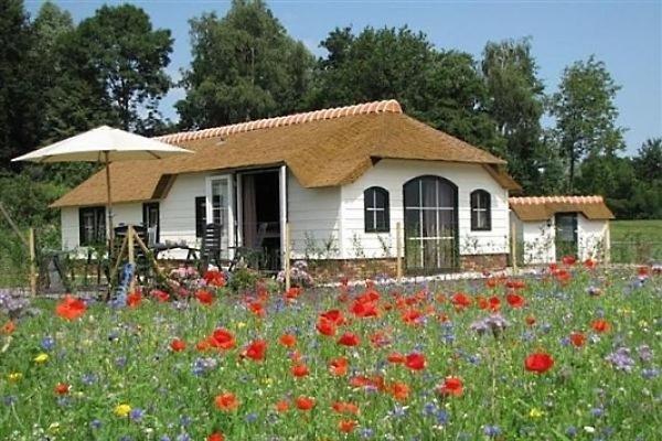 Casa vacanze in Leiden - immagine 1